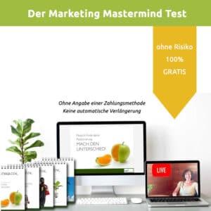 Gratis Test: In 3 Monaten zu einem Marketing das funktioniert